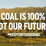 Last Chance To Sign! Petition to Save Te Kuha From Coal Mining Closes This Sunday, 18 March!