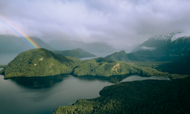 Celebrating 50 years of the Save Manapouri Campaign