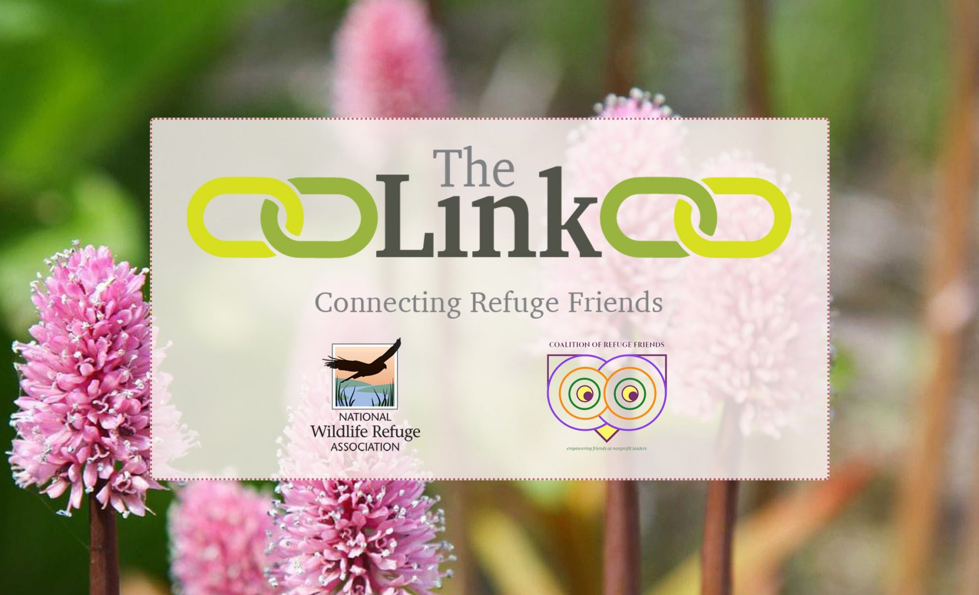 The Link — Spring 2020 Newsletter