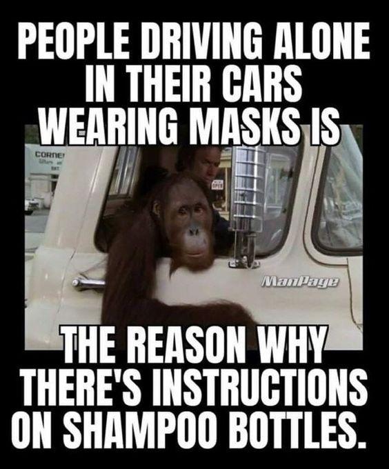 driving alone wearing mask meme chimp