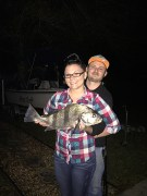 Girlfriends first ever catch. Black drum on a Shinano Stradic with I believe 12lbs braid. East side of Indian River south of the Melbourne causeway. Free lining live shrimp.