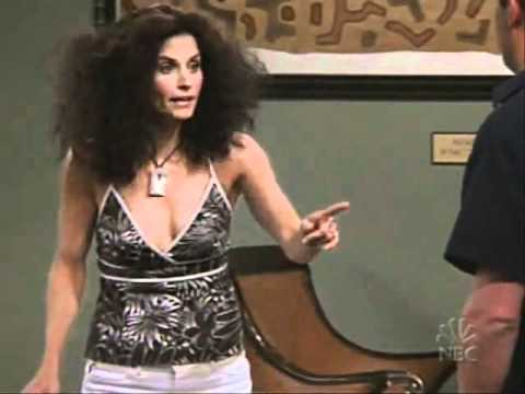 Monica's hair, post-humidity, on Friends
