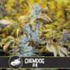 Chemdog #4 Chemdawg #4