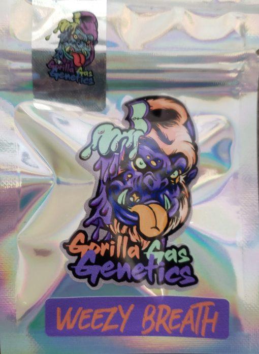 Weezy Breath from Gorilla Gas Genetics