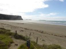 The crowded beach