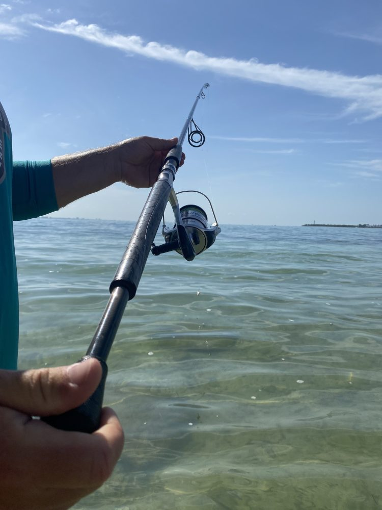 Coastal Predator 10' surf rod. Metallic Black Rod. Grey Winn Grips. Teal Thread Wraps. American Tackle Company Microwave Guides. Tubby Shad Greenback over Glass smooth and clear water of Sanibel Island.