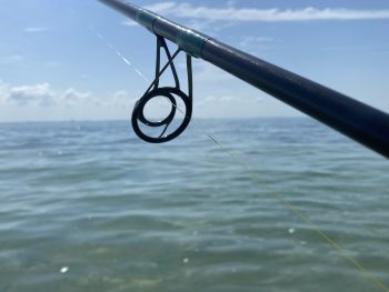 Custom Color Fishing Rod