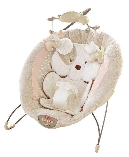 Bouncy Seat Image