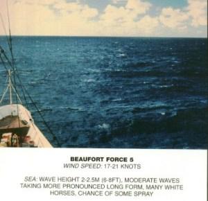 Beaufort_scale_5