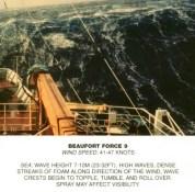 Beaufort_scale_9