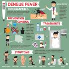 dengue 23