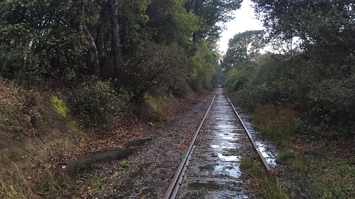 Read more about the article Good Times: Coast Connect Project Aims to Build Support for Rail Trail