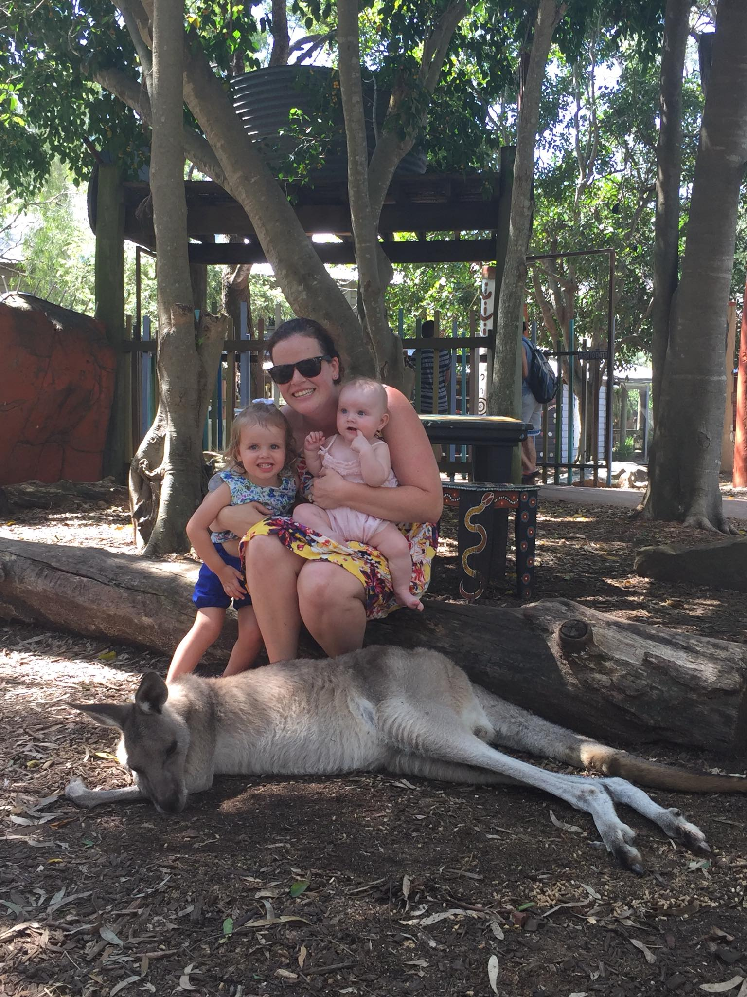 A family at Dreamworld with kangaroos