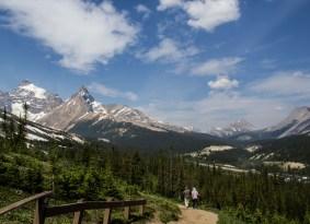 Majesty all around the Parker Ridge trail. Dawn Page / CoastsideSlacking