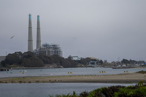 Lovely Moss Landing. Dawn Page / CoastsideSlacking