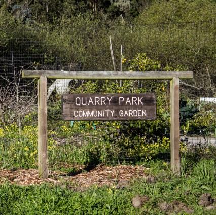 Quarry Park, home of the El Granada labyrinth. Dawn Page / CoastsideSlacking