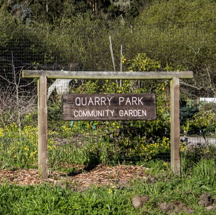 Quarry Park, home of the El Granada labyrinth. Dawn Page / CoastsideSlacking
