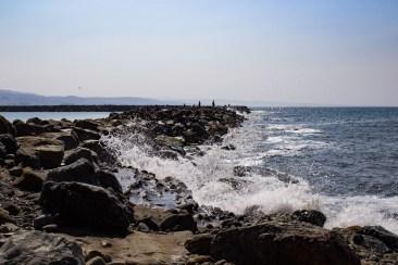 Pillar Point harbor breakwater. Dawn Page / CoastsideSlacking