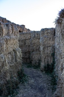 We wander lost in a hay bale maze until an overheard hint saves us. Dawn Page / CoastsideSlacking