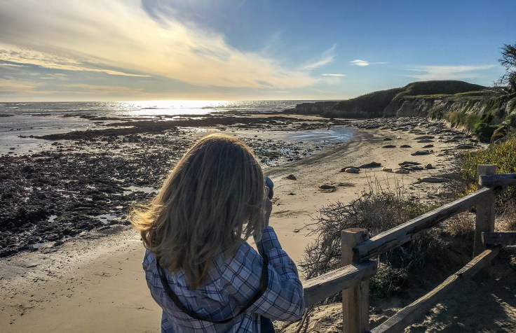 The Geek doing her thing at Año Nuevo State Park in Pescadero, California. Dan Page / CoastsideSlacking.