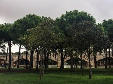 Turia Gardens in Valencia, Spain. Dawn Page / CoastsideSlacking