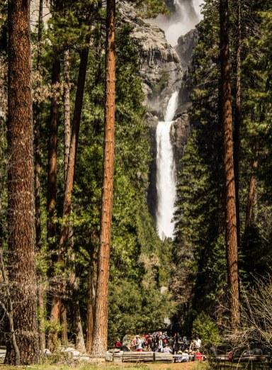 Lower Yosemite Fall. Dawn Page/Coastside Slacking