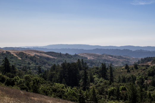 The view from Djerassi. Dawn Page/CoastsideSlacking