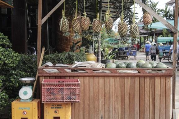 cobalt_state_laos_4000_islands_ananas
