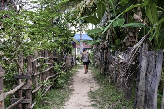 cobalt_state_laos_4000_islands_little_way_basi