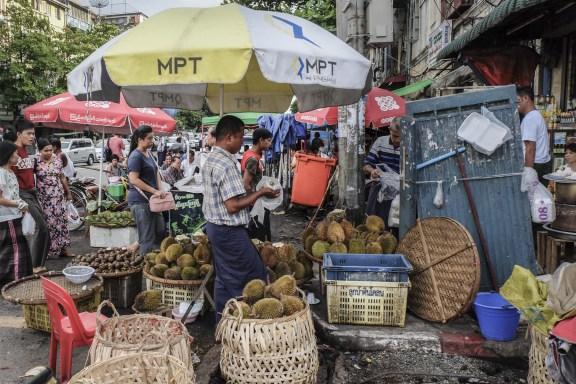 cobalt_state_myanmar_yangon_city_fruit_corner