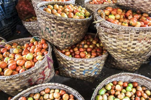 cobalt_state_myanmar_bagan_market_tomatoes