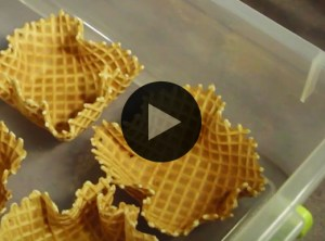 Store Waffle Cones