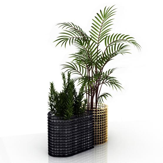 Golden - Double Vase