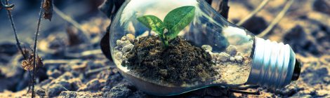 innovation in sustainable business practices