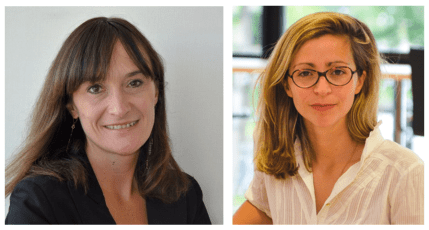 ESSEC Business School Profs. Anne Jeny and Estefania Santacreu-Vasut explore the world's Big Four audit firms and come up with research that suggests that the nature and grammar of languages may help to explain the rarity of women at the top of the profession.