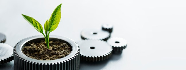 The Circular Economy and Biomimicry for Sustainability: Dat Tien Dinh, IE Business School Runner-up in the 2021 CoBS student CSR article competition, looks at how nature and biomimicry can help the circular economy change the world – for the better.