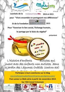 Affiche 2015 Coccinelles et abeilles