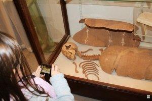 Cosa vedere a Gozo musei