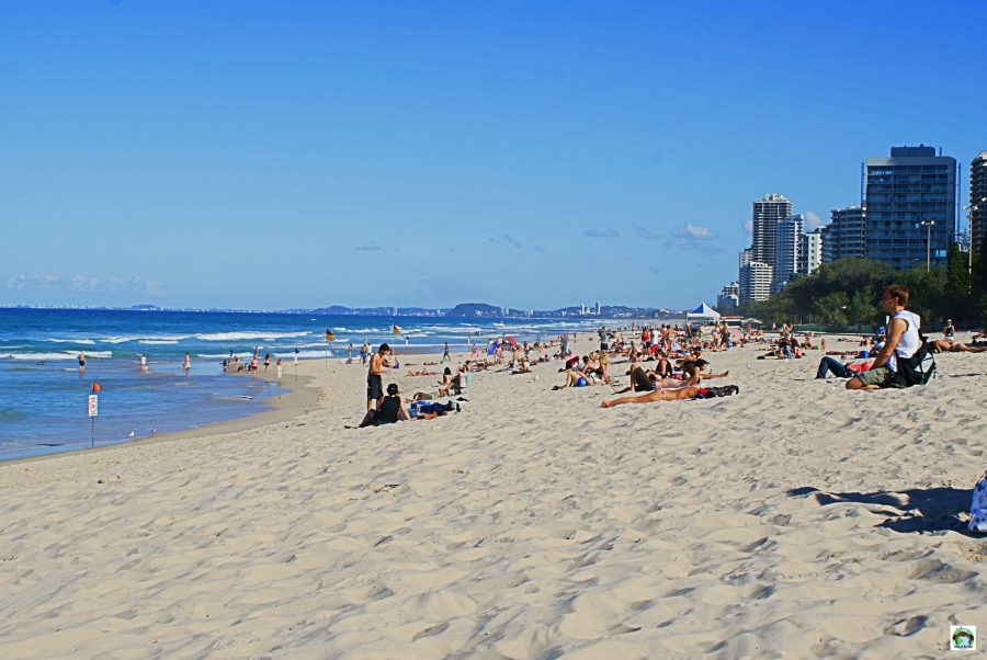10 cose da vedere nella Gold Coast on the road