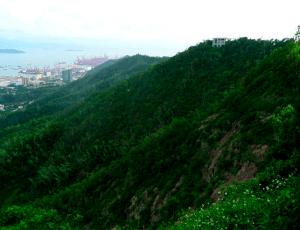 Cosa fare a Shenzhen Monte Nanshan