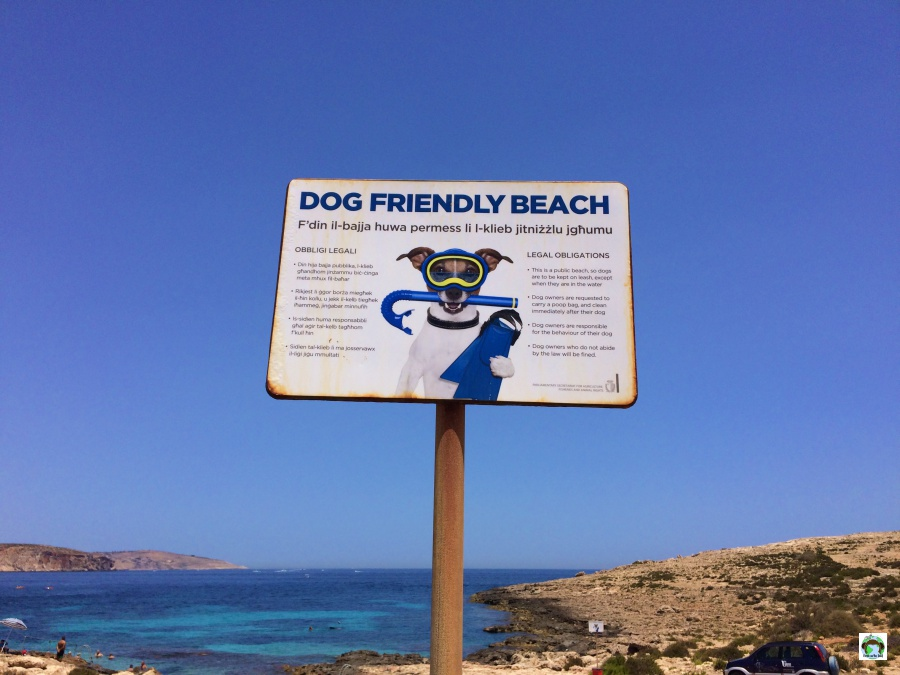 Spiagge per animali Malta Isola Pet friendly