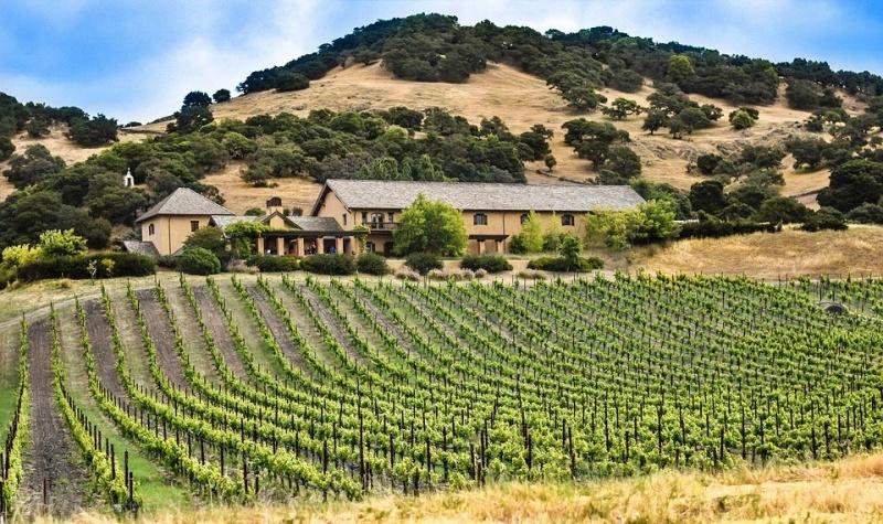 luoghi vini California