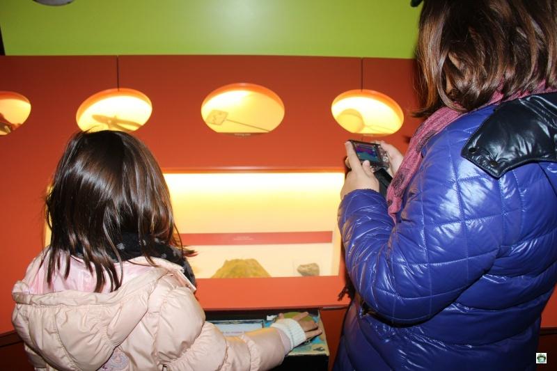 Cosa visitare a Londra con i bambini I Musei