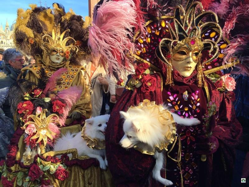 Carnevale di Venezia 2019 date e programmi