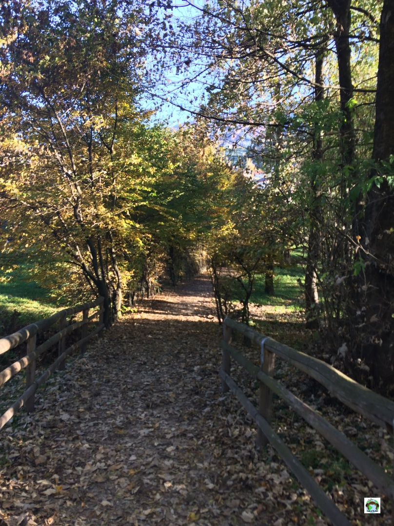 Sentieri all'interno del Parco del Lago Santa Croce