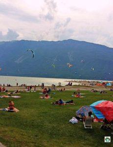Spiaggia d'estate al lago Santa Croce - Cocco on the road