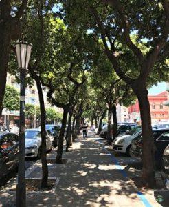 Viale alberato di fronte a Corso Cavour - Cocco on the road