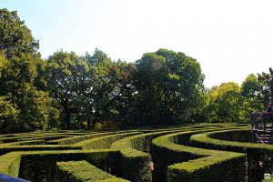 Parco Giardino Sigurtà mille varietà di fiori e piante