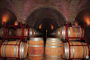 Cantina del Borgo la Caccia - Cocco on the road