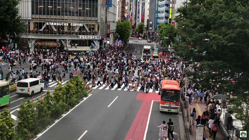 Cosa vedere a Tokyo Shibuya Crossing